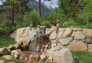 281Tigerwood_WaterFeature_MLS