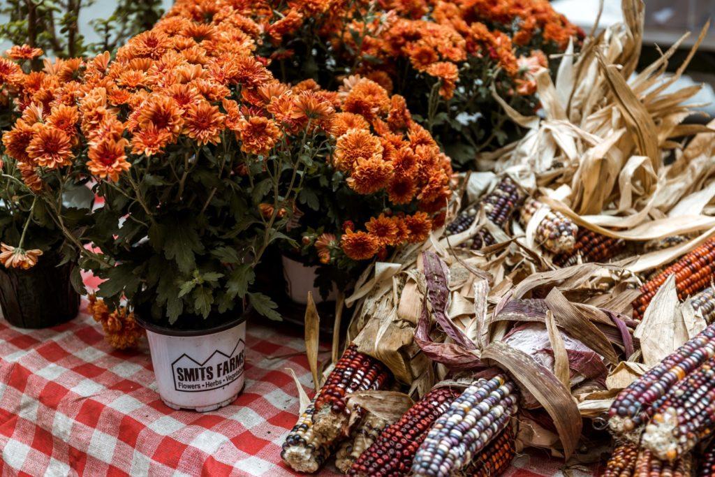 Orange flower and dried ornamental corn.