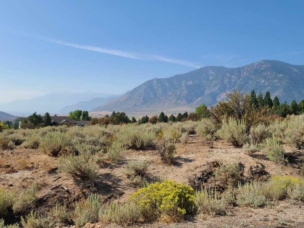 View of lot #27 showing sagebrush and mountain views